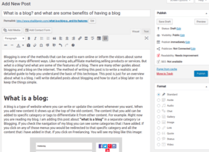 what is a blog and wordpress admin panel